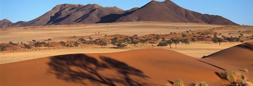 Le désert de Namibie